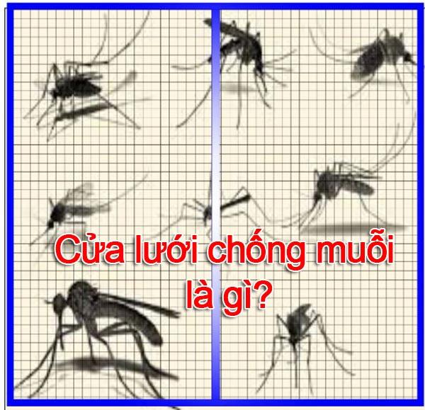 cửa lưới chống muỗi là gì có tốt không
