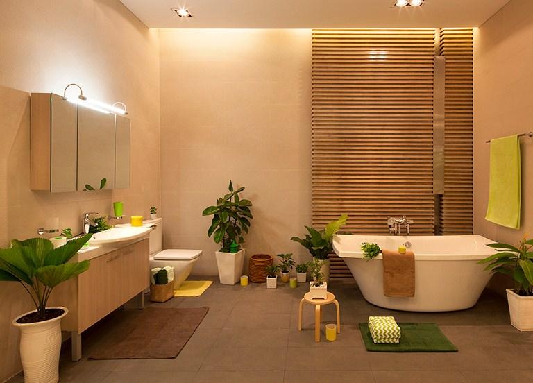 nên trồng cây gì trong nhà vệ sinh để thanh lọc không khí